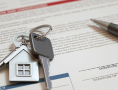 transfer of property law